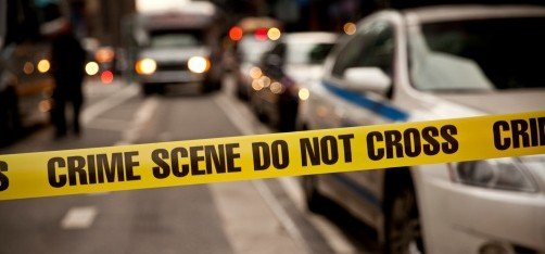 Dalhousie Crime Statistics